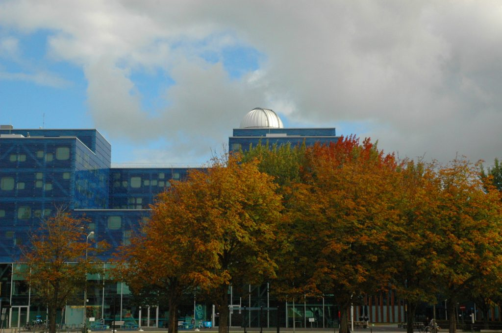 faculty of sciences (mathematics)