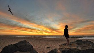 sunset-4801688_1920